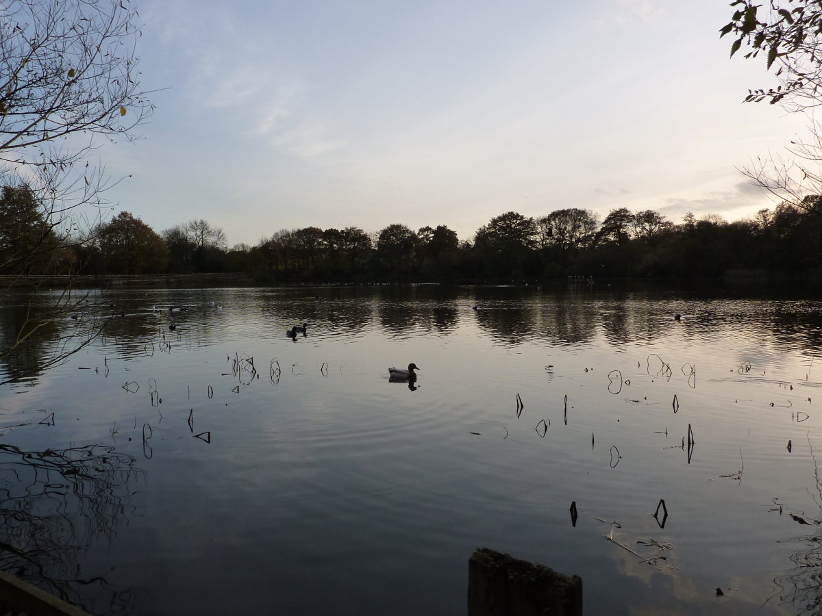 Rushcliffe Country Park Cafe